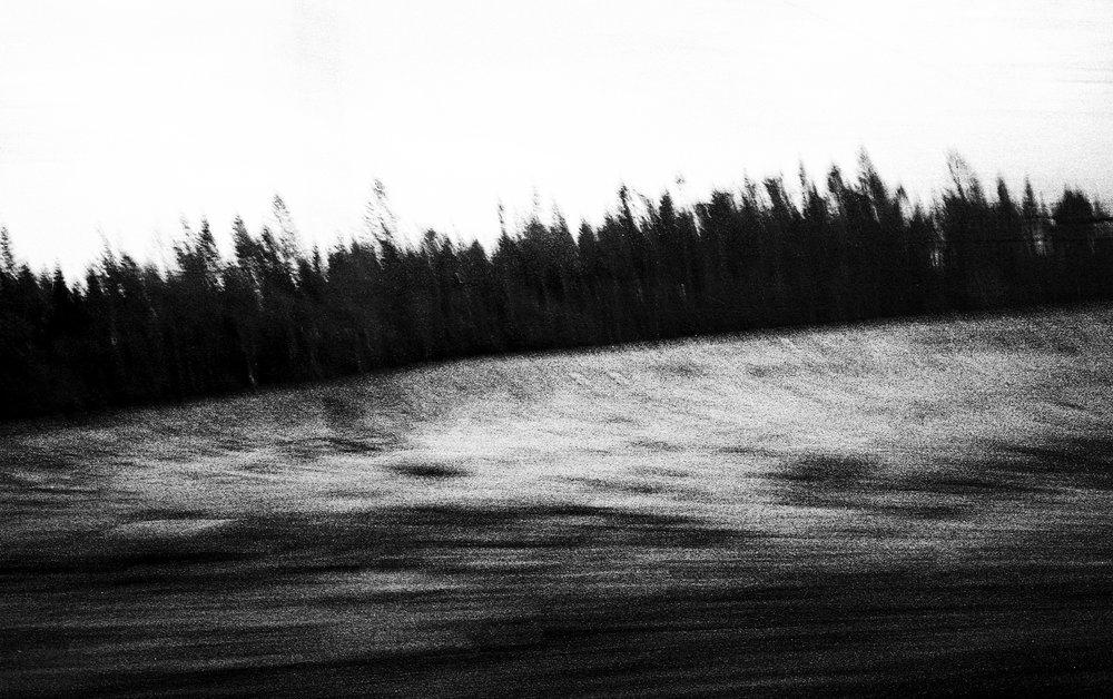 Portra006.jpg