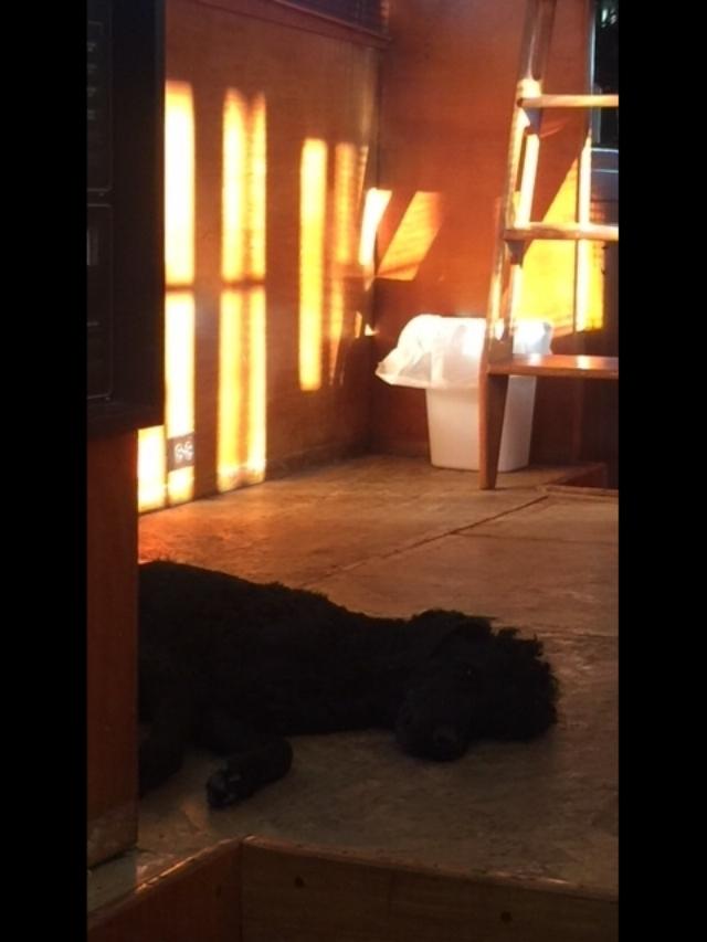 Kohl in Betty Jane deckhouse