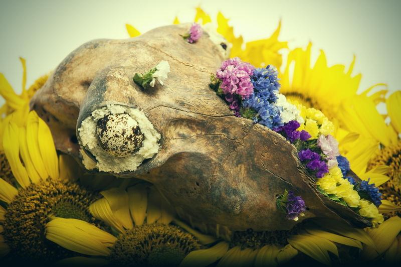 Le triomphe de la vie sur la mort / The triumph of life over death V1
