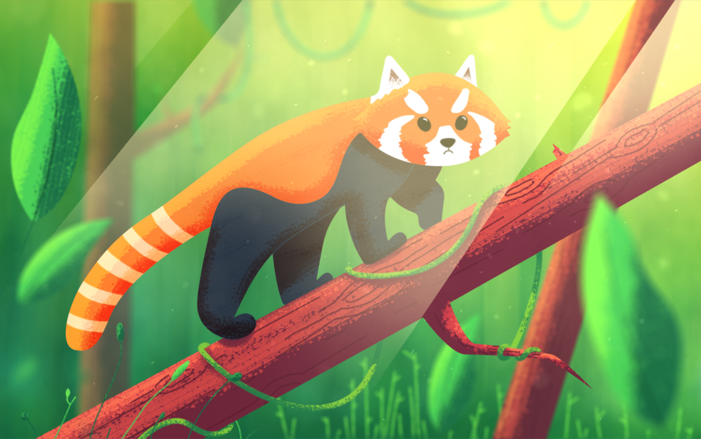 Red Panda - Final Image.png
