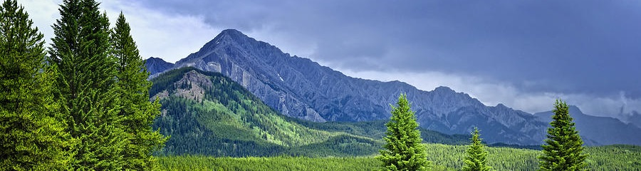 scenic-view-in-canadian-rockies-elena-elisseeva.jpg