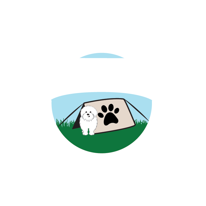 Top Dog Day Camp — LIGHTBOX Button - Interview and App