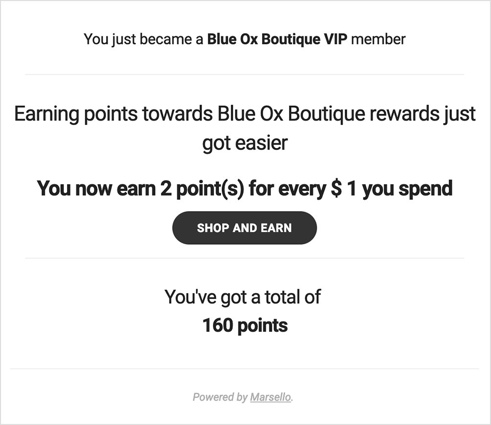 Blue Ox Boutique Loyalty Tier Email Notification
