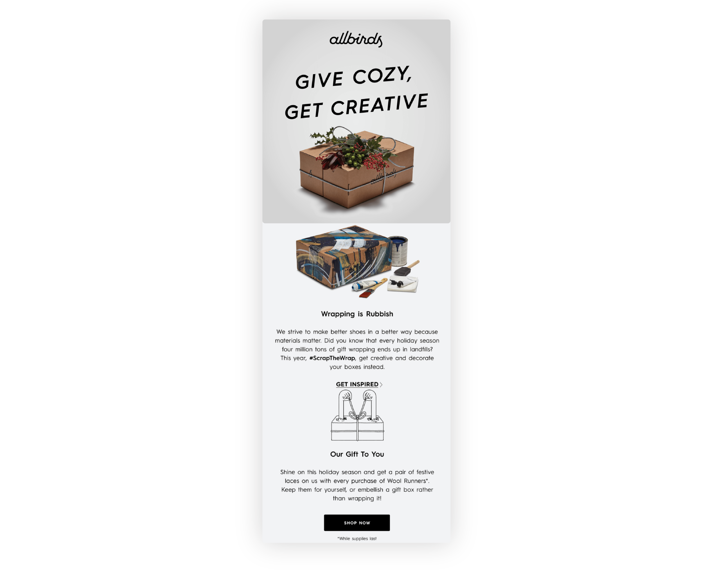 AllBirds email saying 'give cosy, get creative' on a grey background with a 'shop now' CTA.