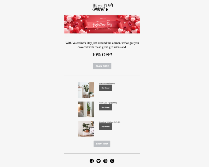 Marsello Holiday Email – The Little Plant Company One-off Campaign
