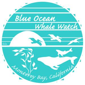 Kate Cummings, Blue Ocean Whale Watch