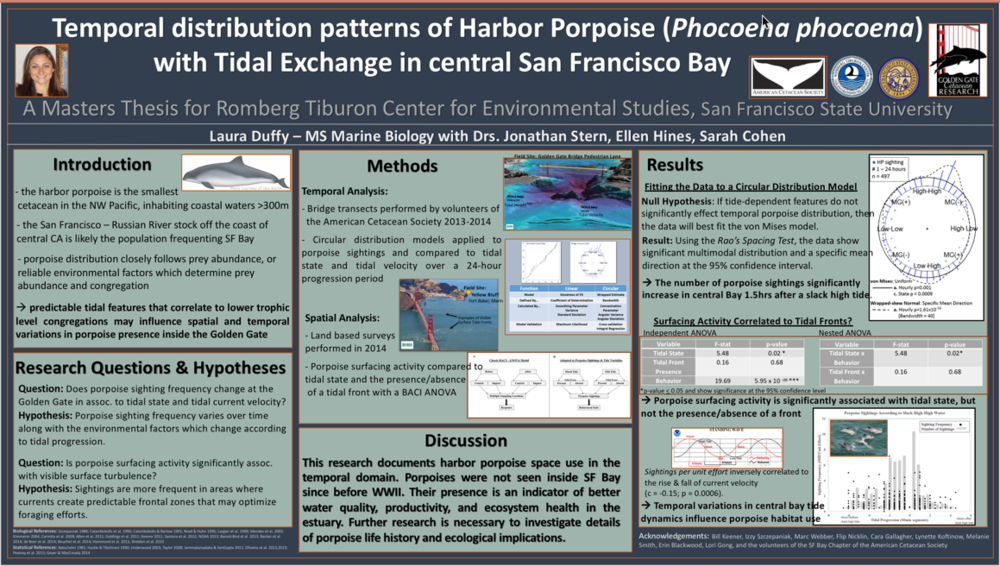 Laura Duffy Masters Thesis Scientific Poster
