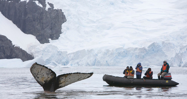 Antarctica by Hugh Rose