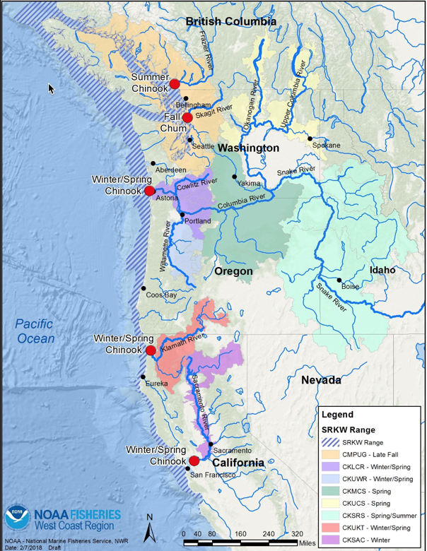 2018 Southern Resident killer whale range and prey ranges
