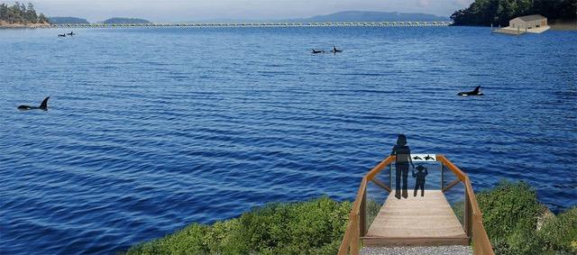 Whale Sanctuary Rendering