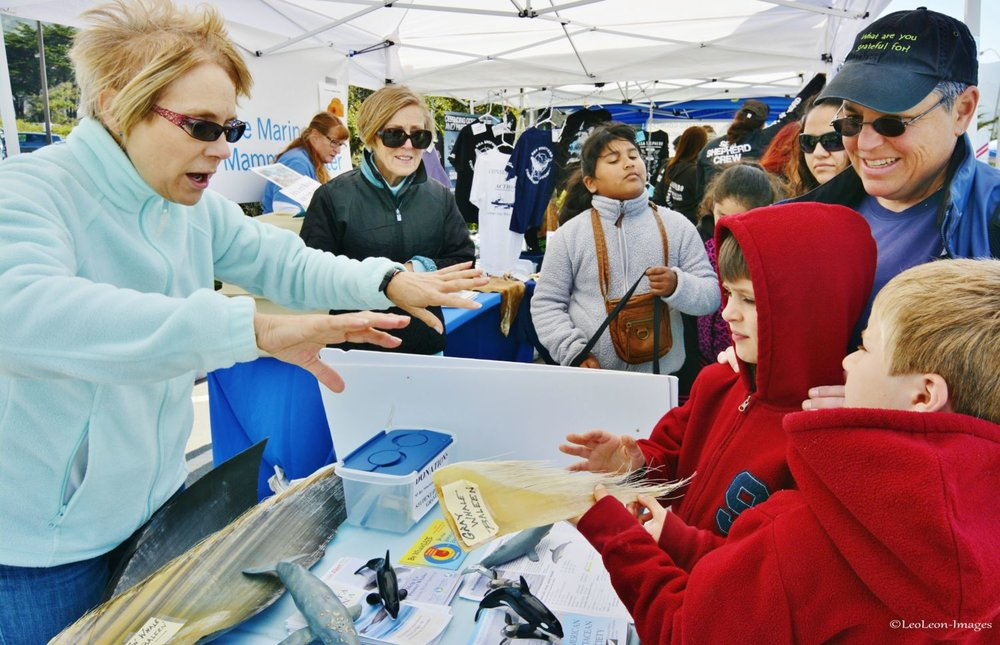 Children visiting the ACS San Francisco Bay Chapter booth at a previous EcoFest