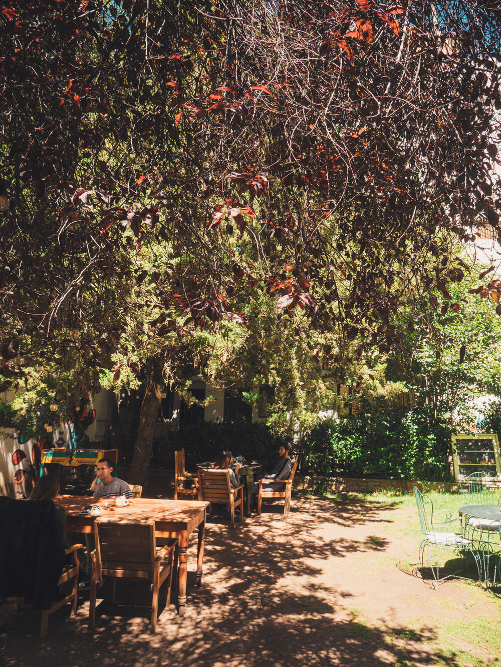 In the garden of Typica Café, a great spot to work and sip cortado's
