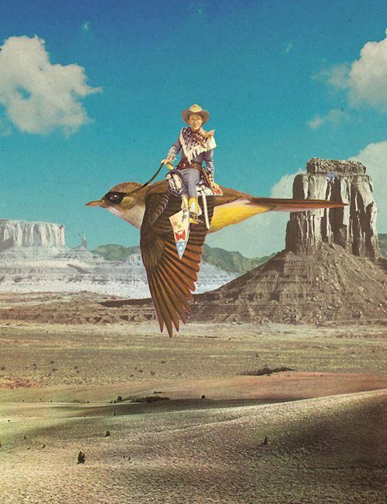 Bird - Sammy Slabbinck