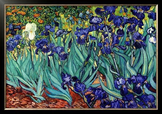 vincent-van-gogh-irises-saint-remy-c-1889_a-l-8301249-0.jpg