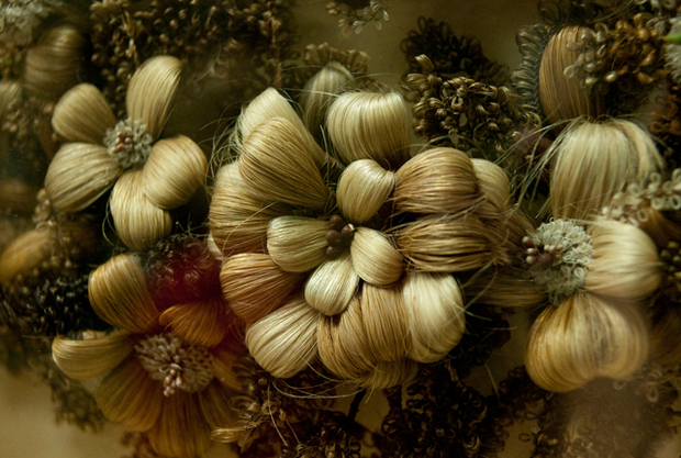 hairy-flower_0.png