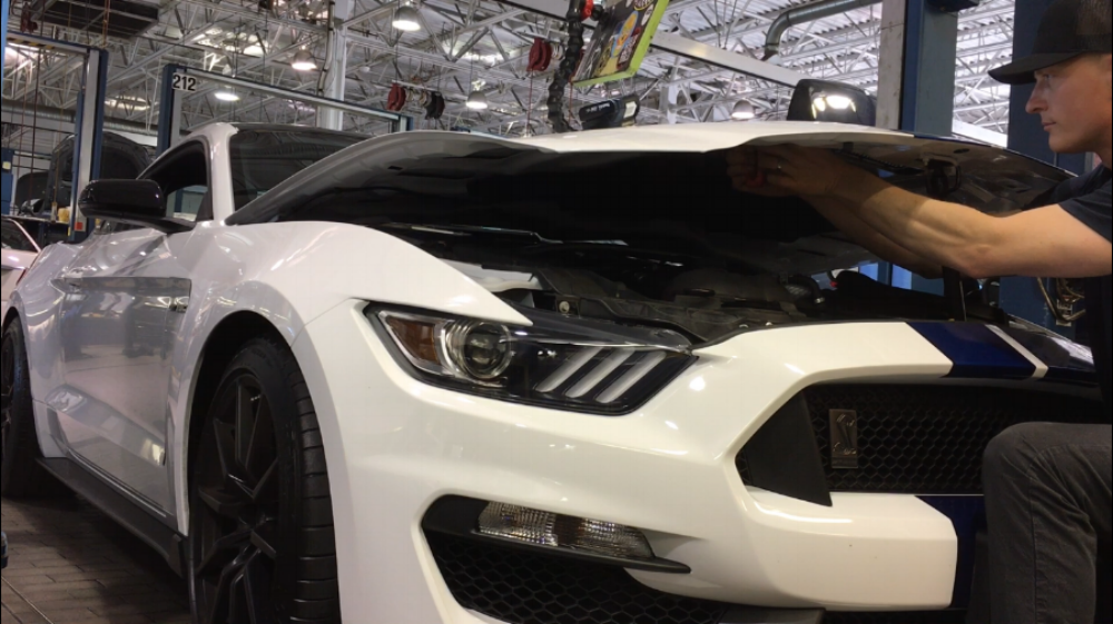 mustang GT 350 hail damage repair