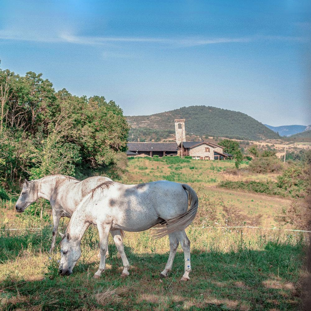Santa Eugènia de Nerellà  El campanar de l'esglèsia de Santa Eugènia de Nerellà és conegut també com la torre de Pisa de la Cerdanya, i és que el campanar d'aquesta esglèsia romànica està molt inclinat. Tot i així, és l'únic campanar romànic que queda conservat íntegrament a la Cerdanya.