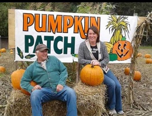 mabou gardens pumpkin patch.jpg