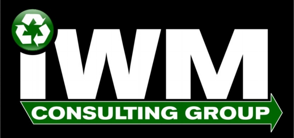 IWM Consulting Group