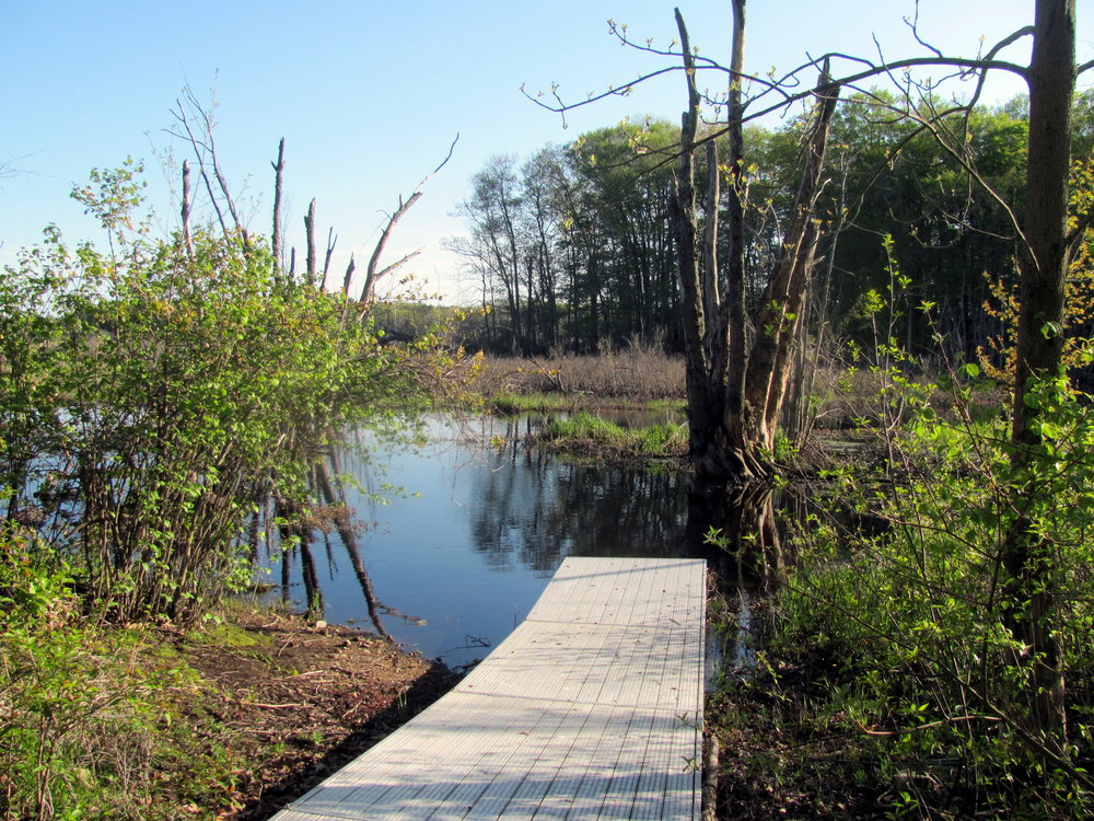 The river walk trail features a small floating dock where visitors can launch canoes or kayaks.