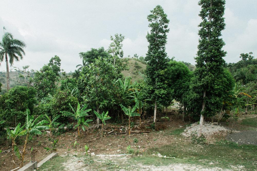 HaitiAug2018-234.jpg