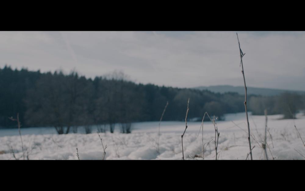 Free     short film  Director: Tillmann Lunau     DOP: julian zalac