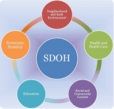 Figure 1:  Healthy People 2020 Approach to Social Determinants of Health