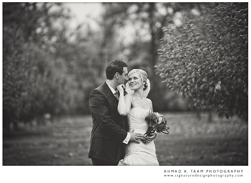 Modern wedding photography. Artistic photography.