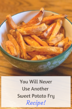 You Will NeverUse Another Sweet Potato Fry - Blue and White.png