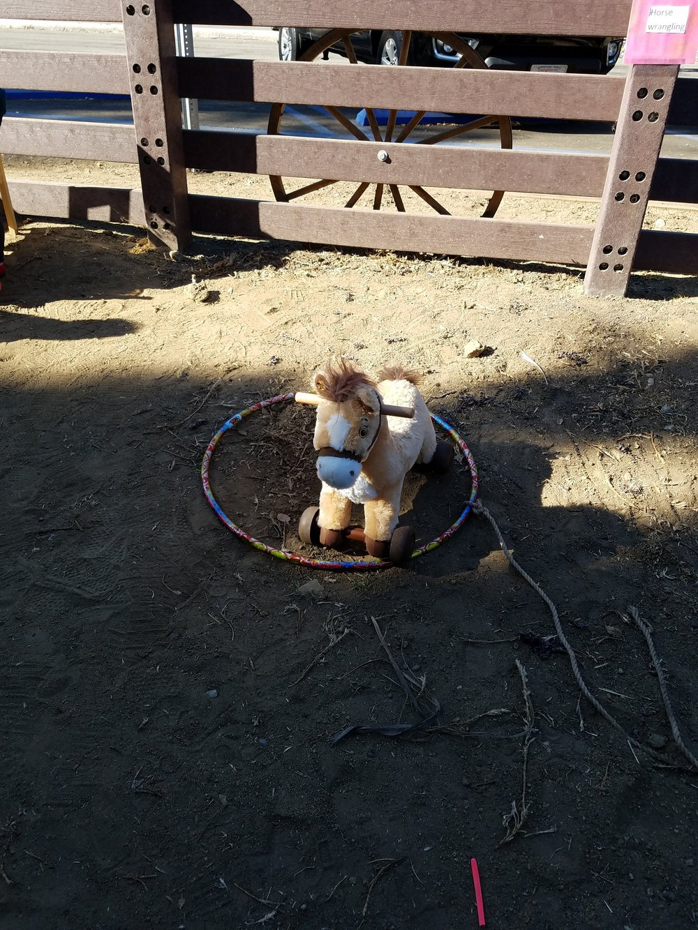 Wrangle a horse. Rope tied around a oola hoop and our small play horse.