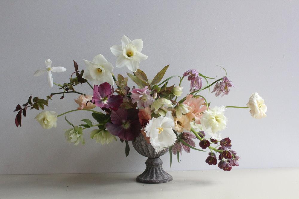 Stephanie McLeod for The Flower Appreciation Society, 2018
