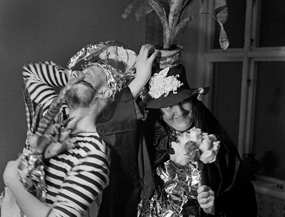 Förlovningsfesten Foto Rolf Lind
