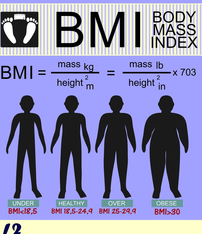 body-mass-index-and-silhouettes-of-different-vector-9353473 (2).jpg