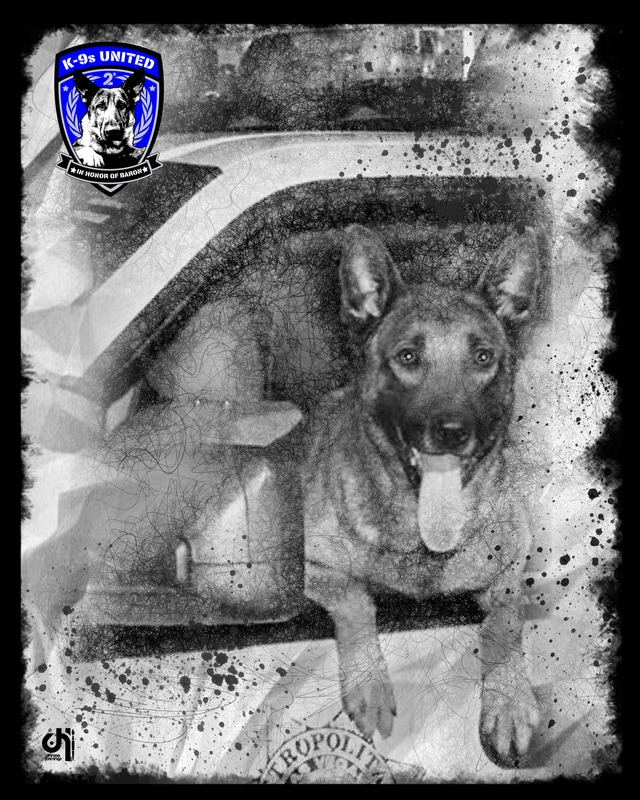 16-3-31-k9-nicky-art_orig.jpg