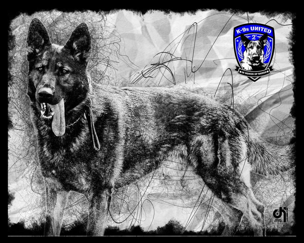 k9-falko-art-toledo-police_orig.jpg