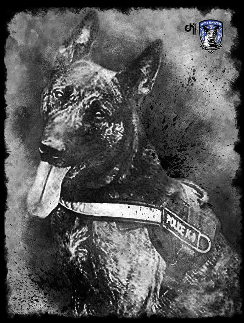 Canvas-K9-Drago.jpg