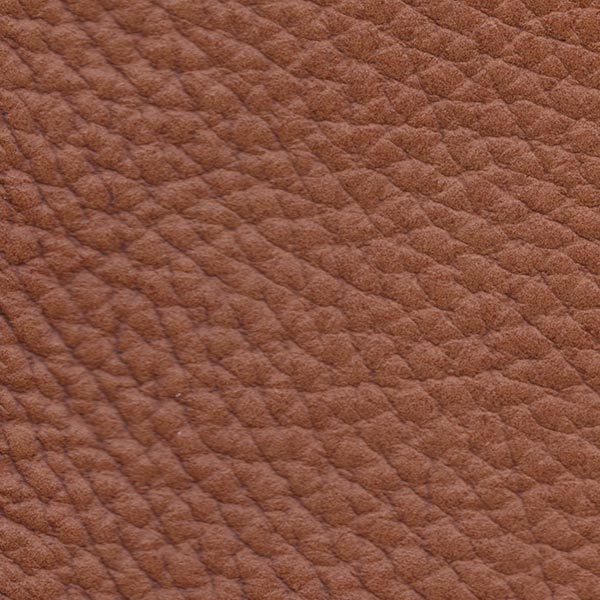 SADDLE BROWN