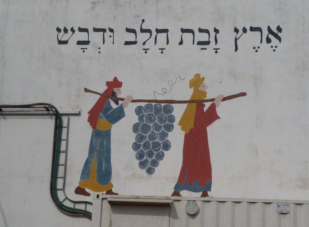 Kibbutz Sde Eliyahu logo-Numbers 13.JPG