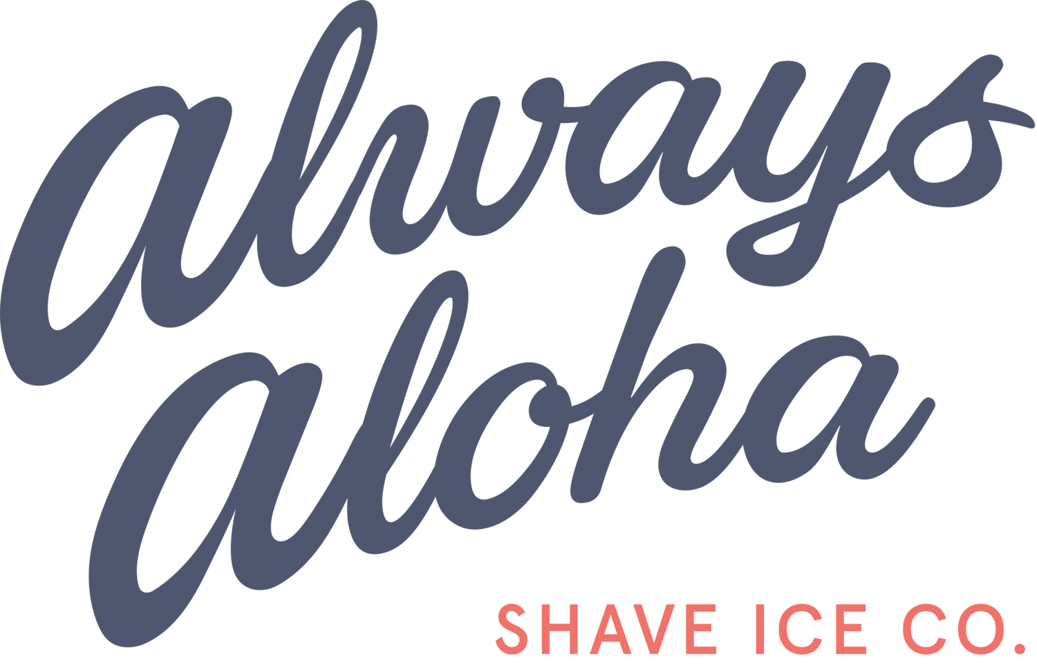 Always Aloha Shave Ice Co.