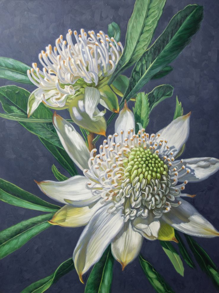 Two White Waratahs