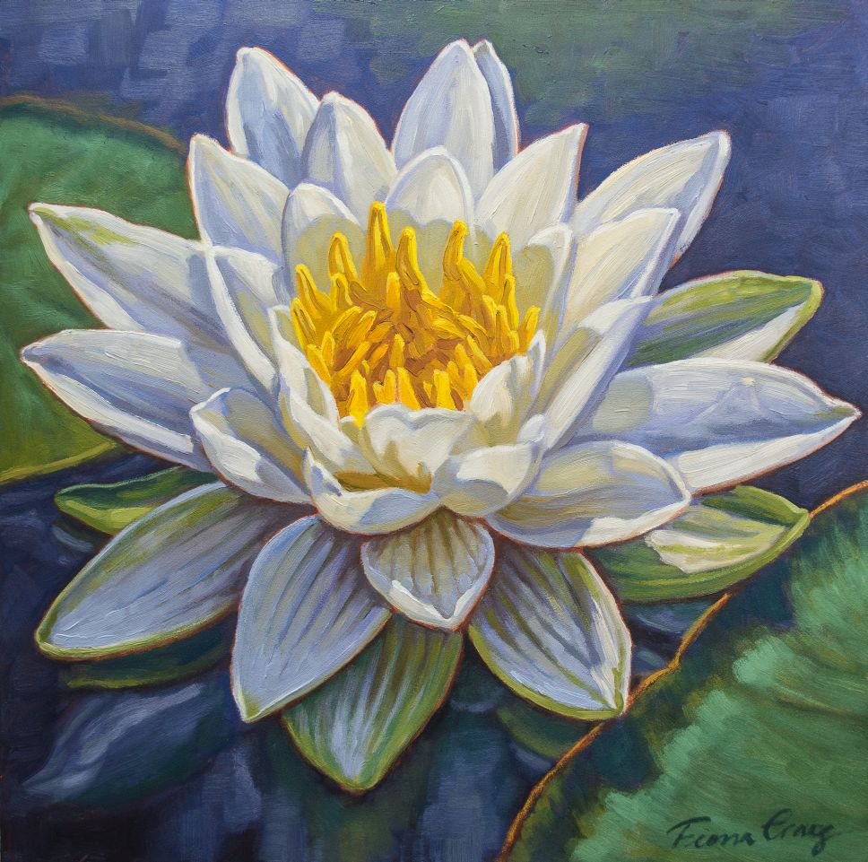 Water lily study in oil paints.