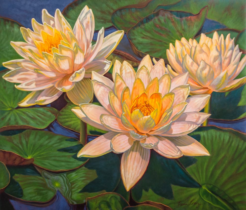Water Lilies 6