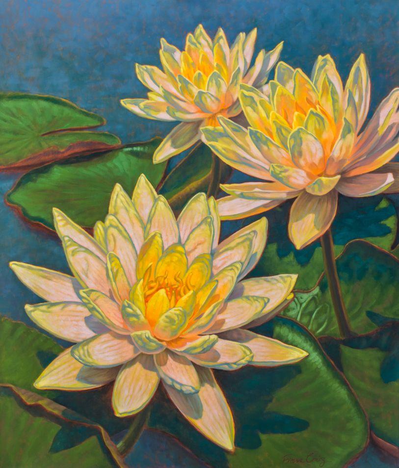 Water Lilies: Sunlit Glow