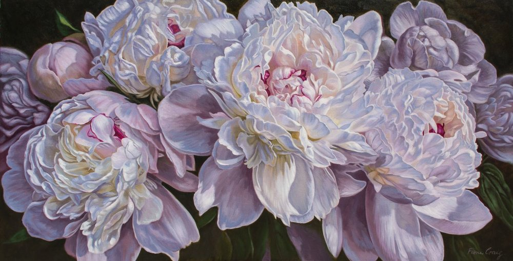 "Panorama of Peonies , Fiona Craig, oil on gallery-wrap canvas, 62"" x 32"" x 1.5""."
