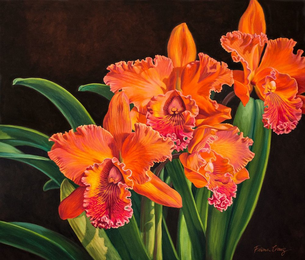 Orchid Fever 4: Volcano Queen