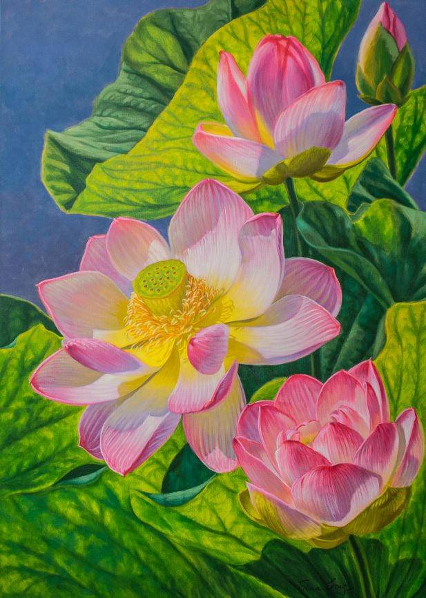"""'Pink Lotuses 2', Fiona Craig, oils, 30"""" x 42""""."""