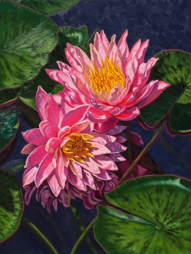 "'Yin-Yang-Water Lilies', Fiona Craig, oils on wood panel, 18"" x 24""."