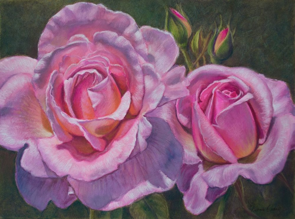 Pink Roses, 1