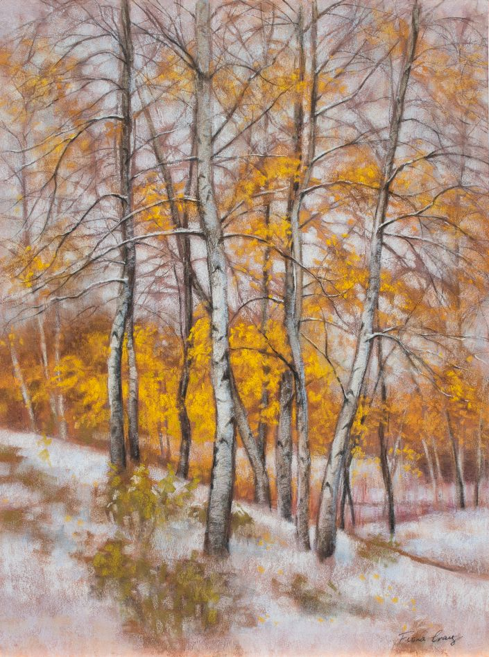 "Birches in First Snow, 3 - Soft pastels on museum-quality wood panel, 18"" x 24"" x 1/8"". Requires framing under glass. This pastel artwork was inspired by autumn birch trees in the first snowfall of the cold season. It is based on a scene at the Chicago Botanic Garden, using some artistic licence. I aimed at producing a vivid contrast between the 'hot' yellows and golds of the autumn foliage and the 'cold' whites of the birch trunks and snow. The trunks and lines of the branches create an interesting interplay of lines and patterns."