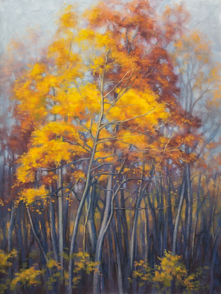"Autumn Forest, 2 - Soft Pastels on museum-quality wooden board, 18"" x 24"" / 45.5 cm x 61 cm. This artwork was inspired by last light on autumn trees. The brilliant gold and rust-coloured foliage make a beautiful display against the greyish tones of the sky and tree trunks."